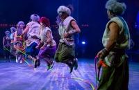 Cirque Beserk
