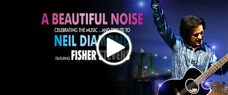 Play video for A Beautiful Noise