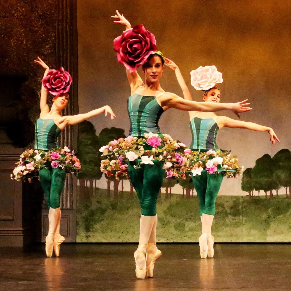 A3912_1000_1000jpg 10001000 ballet figurinos