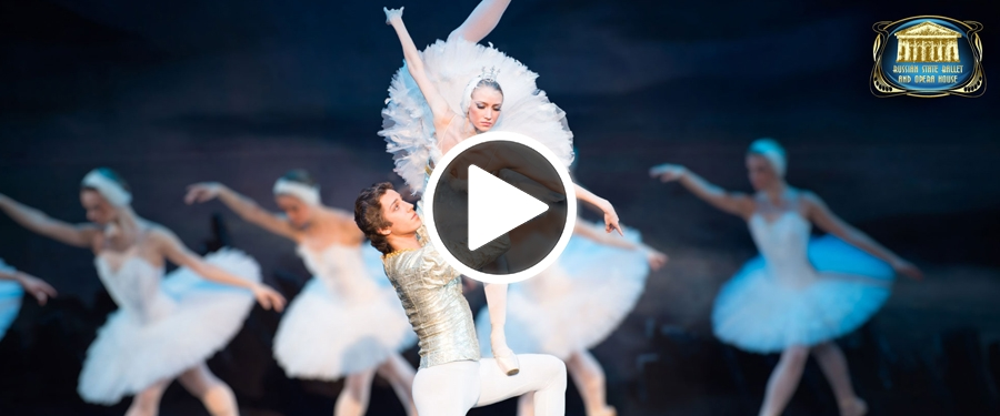Play video for Swan Lake