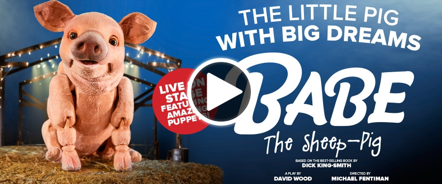 Play video for Babe: The Sheep Pig